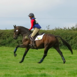 Vinnie Frickley BE100YC xc gallop